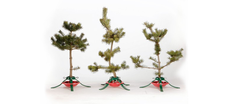 Ugly Christmas Trees